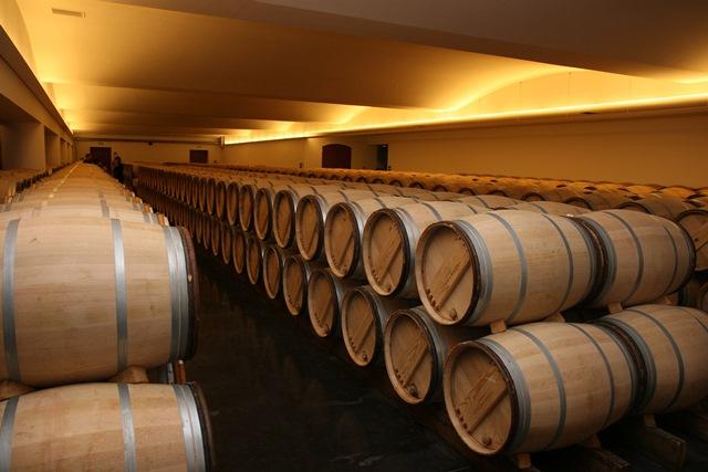 Chai de vinification et de vieillissement en fut de chêne