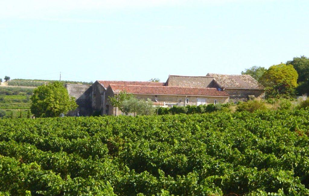 domaine viticole à vendre près de pezenas