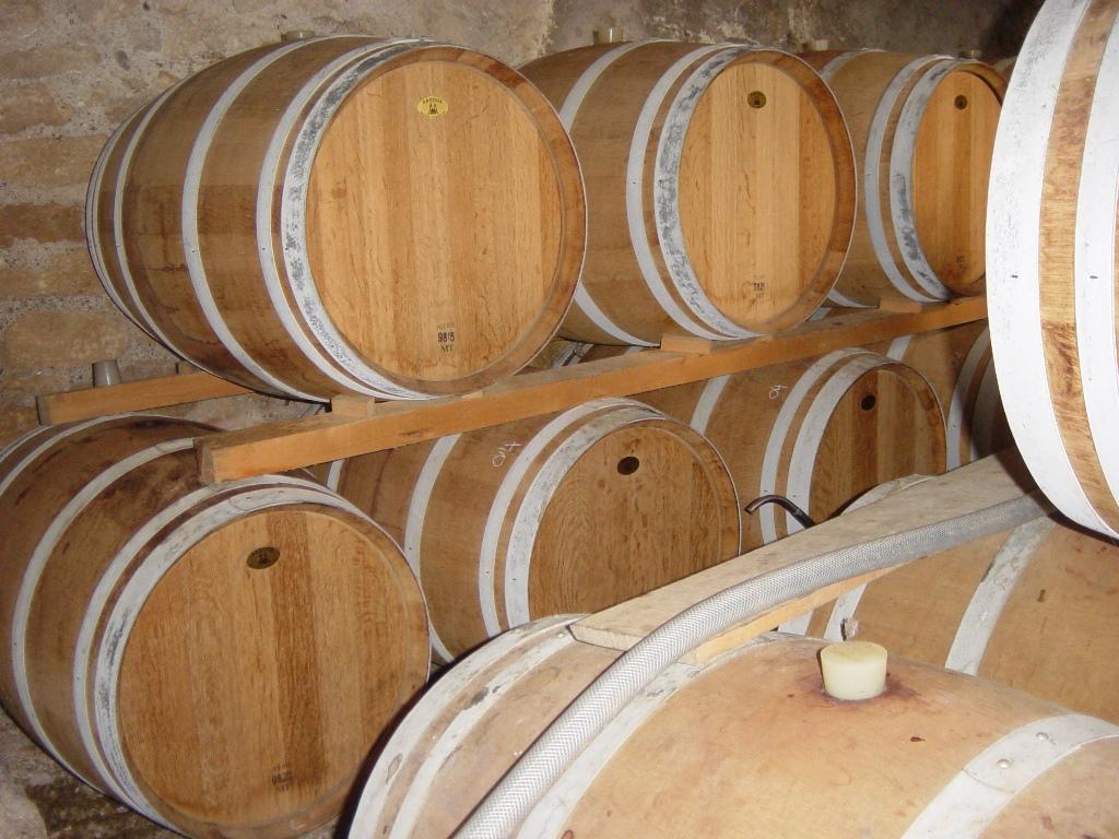 chai a barriques vignoble à vendre pezenas