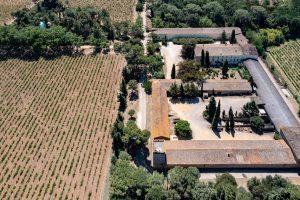 Domaine viticole Sud
